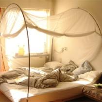 エレガントで可愛いお部屋にしたいなら天蓋ベッドはいかが?
